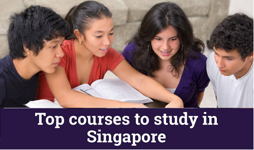 Courses to Study in Singapore