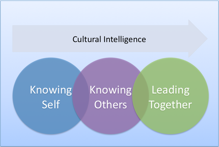 Best Practice Cultural Intelligence Training | Include ...