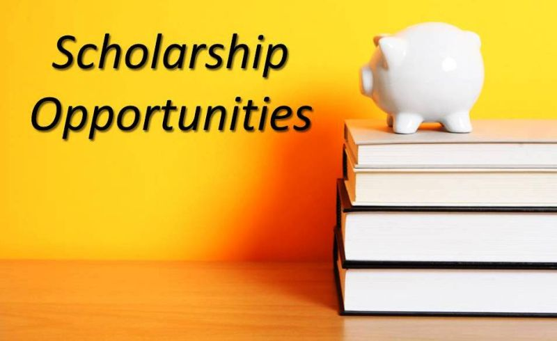 Scholarships and PhD Updates
